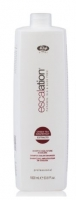 Шампунь для окрашенных волос с ICC Complex и маслом макадамии (Escalation Color Enhancer Shampoo)